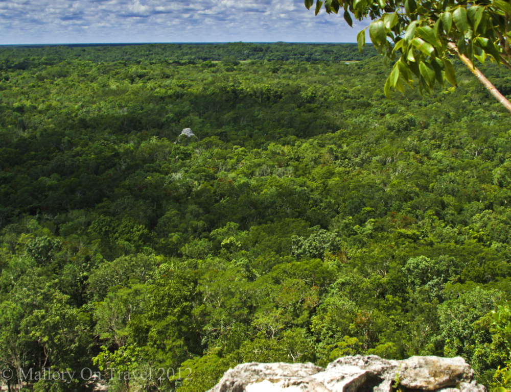 The view over Cobá from the top of Nohoc Mul, The Great Pyramid, near Riviera Maya, Mexico on Mallory on Travel adventure photography