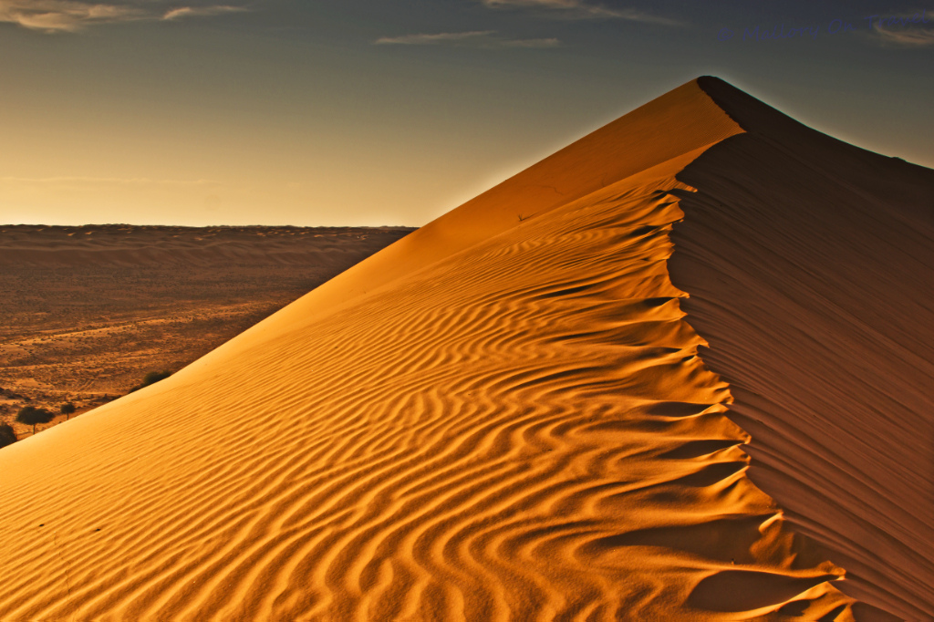 The dunes of Wahiba Sands in the desert of Oman at sunrise on Mallory on Travel adventure photography Iain Mallory-119