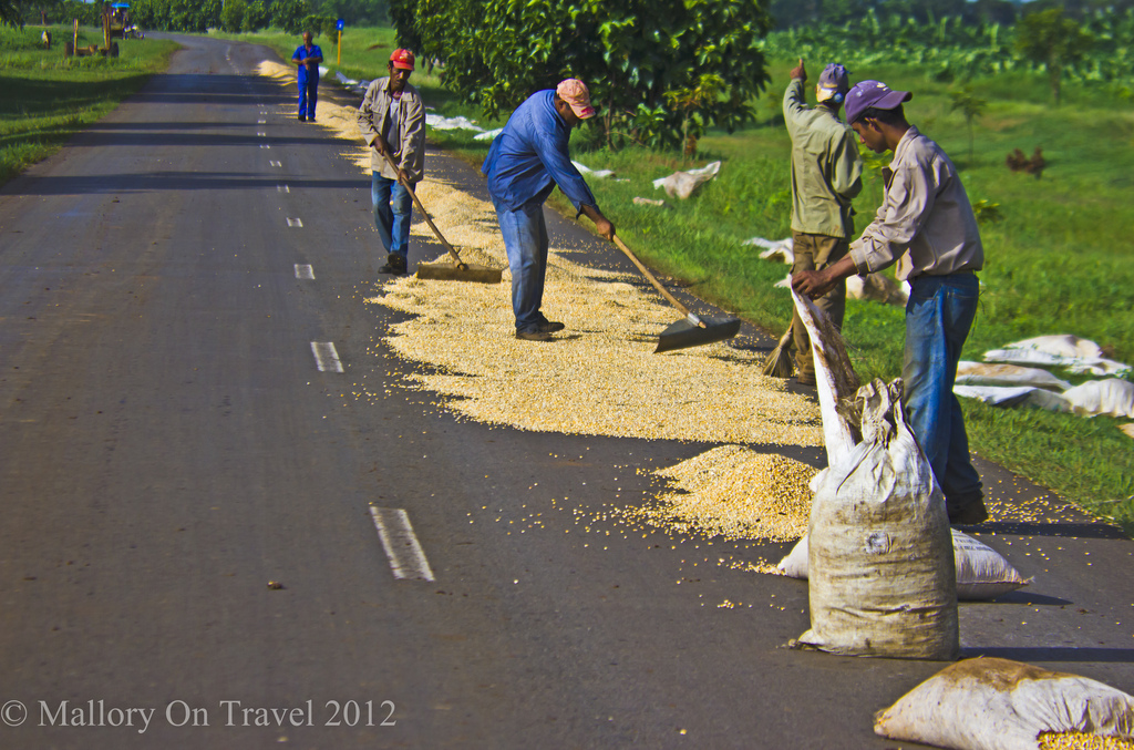 Working the rice road to Havana on the Caribbean island of Cuba on Mallory on Travel, adventure, photography Iain Mallory-300-4 (2)