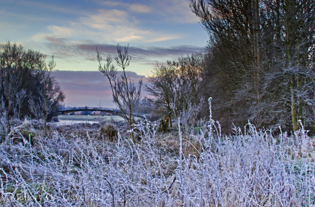 Bridge over the river in suburban Salford woodland, of greenbelt Manchester in the United Kingdom on Mallory on Travel adventure photography Iain Mallory-300-39_winter_scene