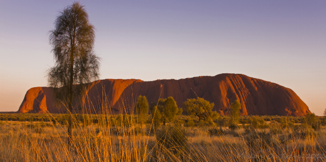 Stunning Uluru formerly Ayers Rock at sunrise in the Northern Territory, Australia on Mallory on Travel adventure, adventure travel, photography Iain Mallory-300-57_uluru_sunrise