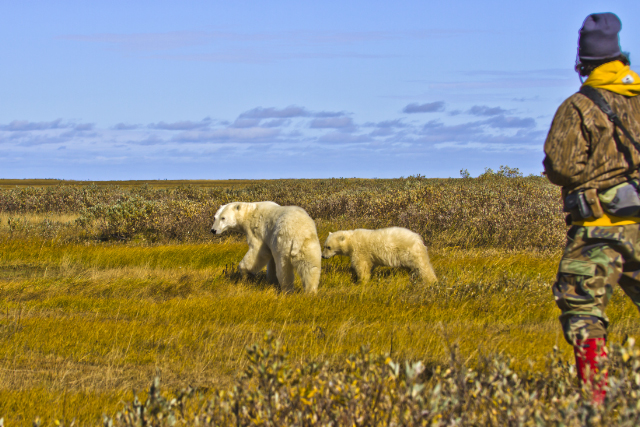 Polar bear guide at Hudson Bay, Manitoba in Canada on Mallory on Travel adventure, adventure travel, photography Iain Mallory-300-128_polar_bears