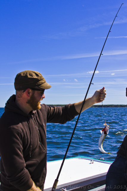 Mackeral angling on a on a lobster fishing cruise out of Georgetown on Prince Edward Island, New Brunswick, Canada  on Mallory on Travel adventure, adventure travel, photography Iain Mallory-300-168_mackerel_fisihing