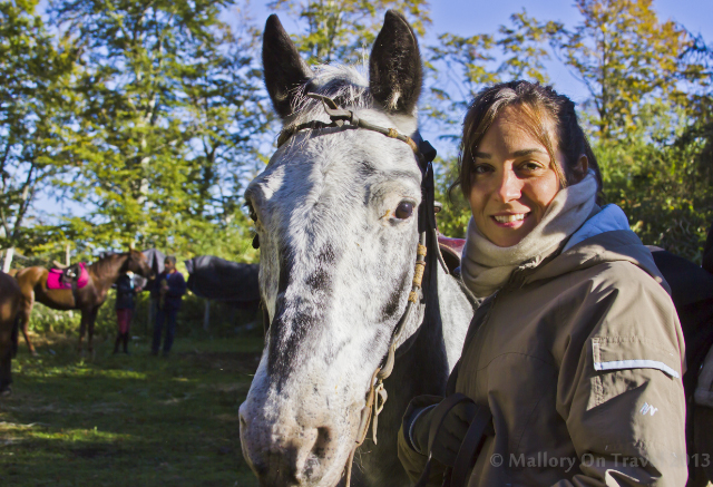 Horse riding in the Matese or Molise, Italy on Mallory on Travel adventure, adventure travel, photography Iain Mallory-300-109_horse_riding