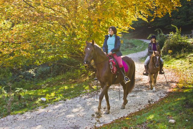 Autumn Horse riding in the Matese of Molise, Italy on Mallory on Travel adventure, adventure travel, photography Iain Mallory-300-13_autumn_horseriding