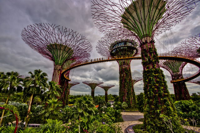 Gardens by the Bay in Singapore on Mallory on Travel adventure, adventure travel, photography Iain Mallory-300-23_gardens_singapore