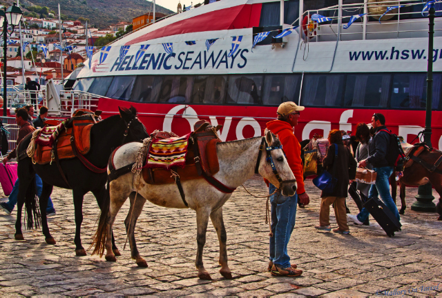Ferry and mules in Hydra in the Saronic Islands, Greece