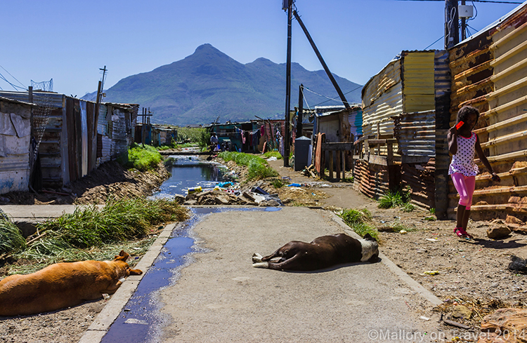 Effluence in waterways  in the township of Masiphumelele near Cape Town, South Africa on Mallory on Travel adventure, adventure travel, photography Iain Mallory-300-25 masiphumelele