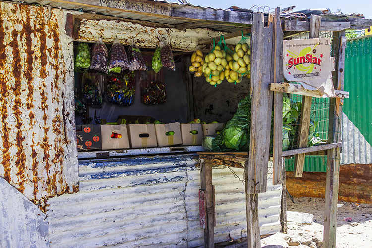Grocery shop in the township of Masiphumelele near Cape Town, South Africa on Mallory on Travel adventure, adventure travel, photography Iain Mallory-300-70 masiphumelele