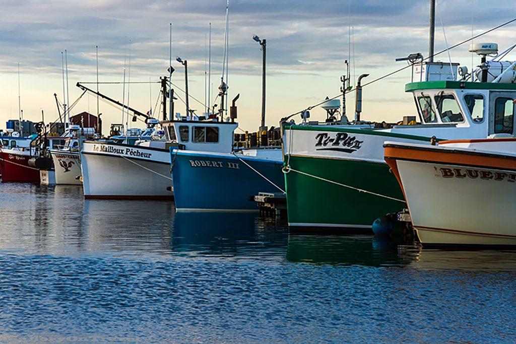 The resting fishing fleet of Caraquet on the north Atlantic coast of New Brunswick, Canada on Mallory on Travel adventure, adventure travel, photography Iain Mallory-196 caraquet_fleet