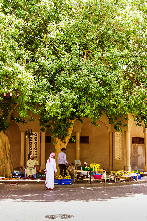 Fruit and vegetable sellers at the souk in Nizwa, Sultanate of Oman on Mallory on Travel adventure, adventure travel, photography Iain Mallory-111 nizwa