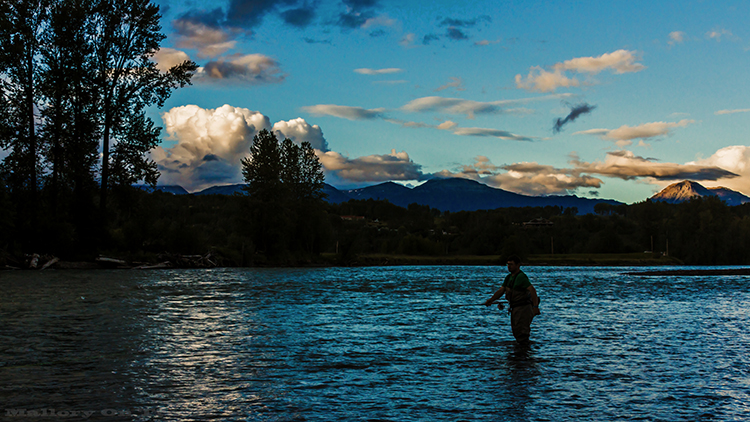 Travel Experiences: A setting sun on a fly fisherman in Smithers, British Columbia, Canada on Mallory on Travel adventure, adventure travel, photography Iain Mallory-175 fly_fisherman