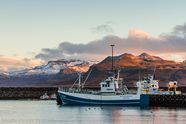 The fishing fleet in the harbour at Olafsvik, on the Snaesfellsnes Peninsula, and National Park in Iceland, the Land of Fire, and Ice on Mallory on Travel adventure, adventure travel, photography Iain Mallory-300-21 olafsvik