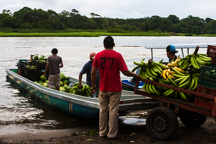 A banana boat in Tortuguera village, in the National Park, Costa Rica in Central America on Mallory on Travel adventure, adventure travel, photography Iain_Mallory_CR1404169 costa_rica