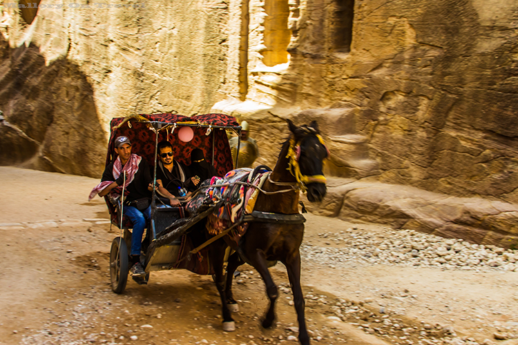 Horse drawn carriage in the mile long Siq canyon in Petra, Jordanon Mallory on Travel adventure, adventure travel, photography Iain_Mallory_Jordan1408786