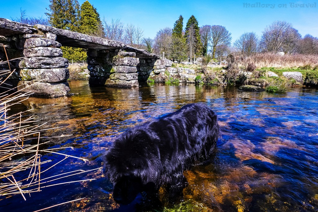 Pretty Devon bridge on the edge of Dartmoor, Baskerville country of Arthur Conan Doyle on Mallory on Travel adventure travel, photography, travel Scilly Isles-87