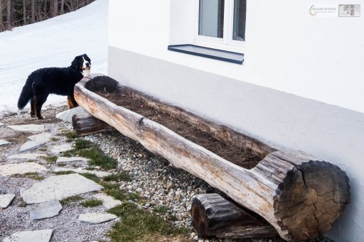 Nelson at MoaAlm mountain retreat in the Hohe Tauern National Park, in the east Tirol, Austrian Alps on Mallory on Travel adventure travel, photography, travel Iain_Mallory_Austria 2790 MoaAlm