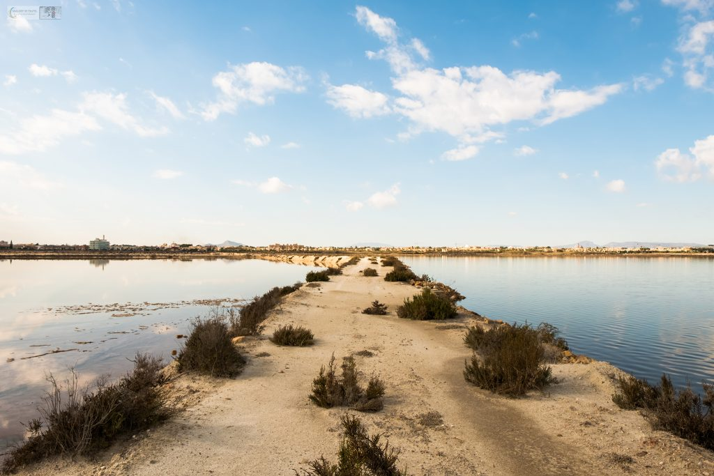 the saltflats of San Pedro del Pinatar near La Manga Strip in Murcia, on the Costa Cálida, Spain on Mallory on Travel adventure travel, photography, travel iain-mallory_murcia-001-50