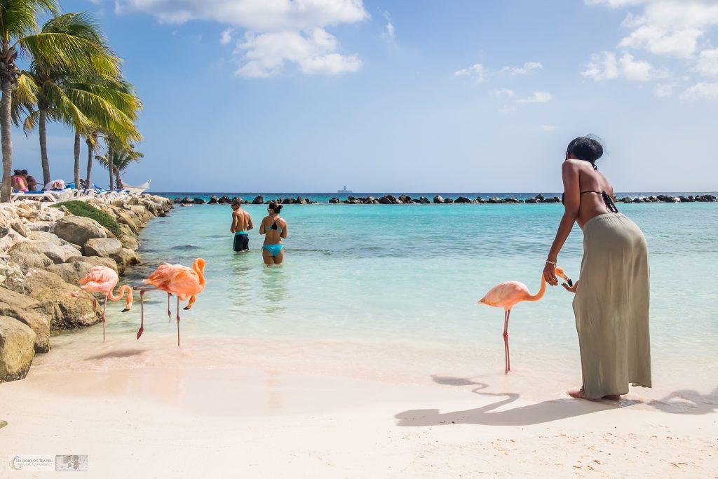Travel inspiration for gloomy days; Flamingo Island beach on the Caribbean island of Aruba on Mallory on Travel adventure travel, photography, travel Iain Mallory_Aruba-5-20