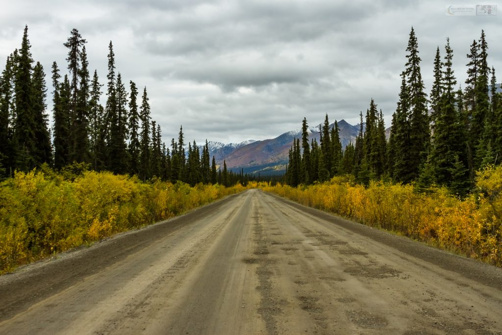 A road trip along the Dempster Highway in Tombstone Territorial Park in The Yukon, Canada on Mallory on Travel adventure travel, photography, travel Iain Mallory_Yukon 090