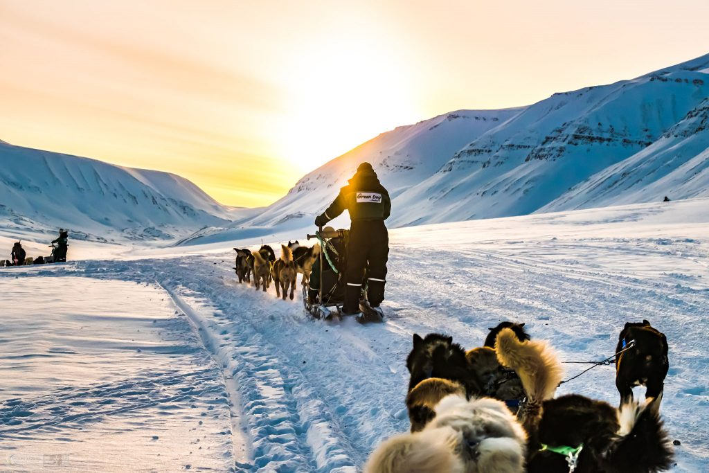 Dog sledding to an ice cave on Spitzbergen in Svalbard, at 81 degrees north in the Arctic Circle on Mallory on Travel adventure travel, photography, travel Iain Mallory_Svalbard-1-100