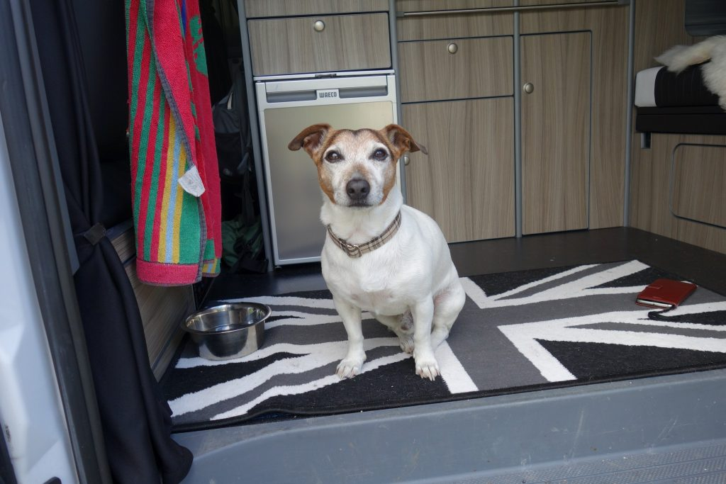 Pocket wolf Spike, the campervanning Jack Russell in a Mercedes Vito diesel camper van on Mallory on Travel adventure travel, photography, travel DSC01428